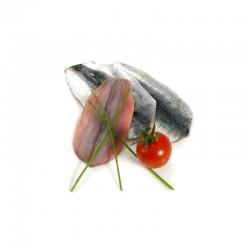 Filetti alaccia (sardina)