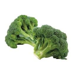 Broccoli I.Q.F.