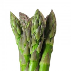Asparagi verdi 16-22